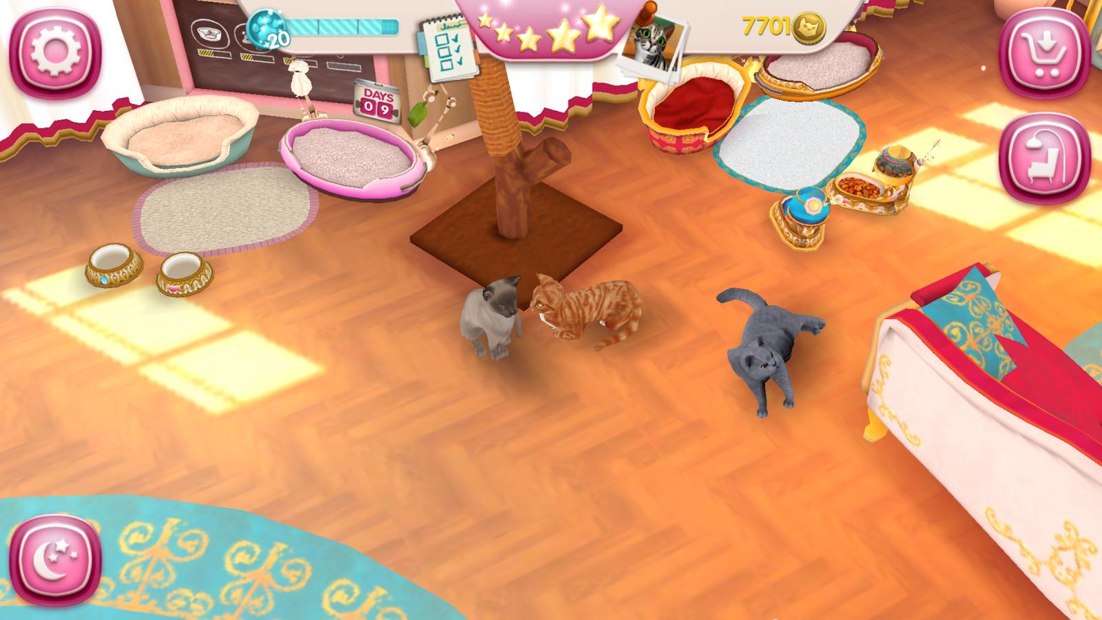 cathotel-hotel-para-gatos-3